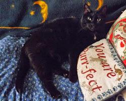 Kiki, Female Tuxedo
