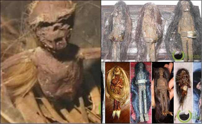7 Misteri dan Fakta tentang Jenglot