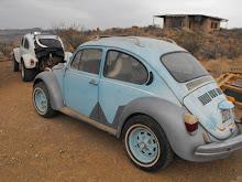 Elenores bug