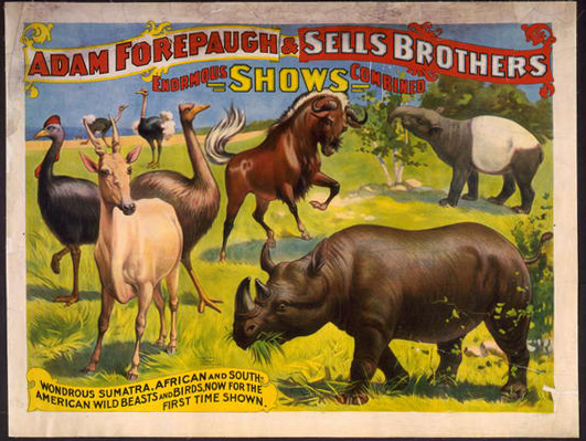 circus, classic posters, free download, graphic design, retro prints, vintage, vintage posters, animal poster, wildlife, Adam Forepaugh & Sells Brothers, Enormous Shows Combined - Vintage Circus Animals Poster