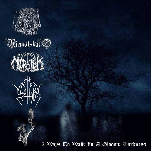 5 Ways to Walk in a Gloomy Darkness, Nicrotek One Man Black Metal Band from Surabaya Indonesia, Indonesian One Man Black Metal