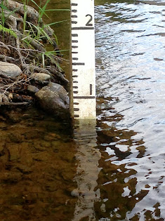 Daily Water Gauge