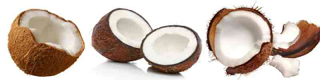 health_benefits_of_eating_coconut_fruits-vegetables-benefits.blogspot.com(1)