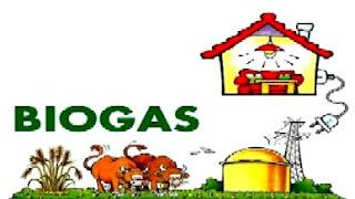 Sử dụng hiệu quả chất thải trong chăn nuôi.
