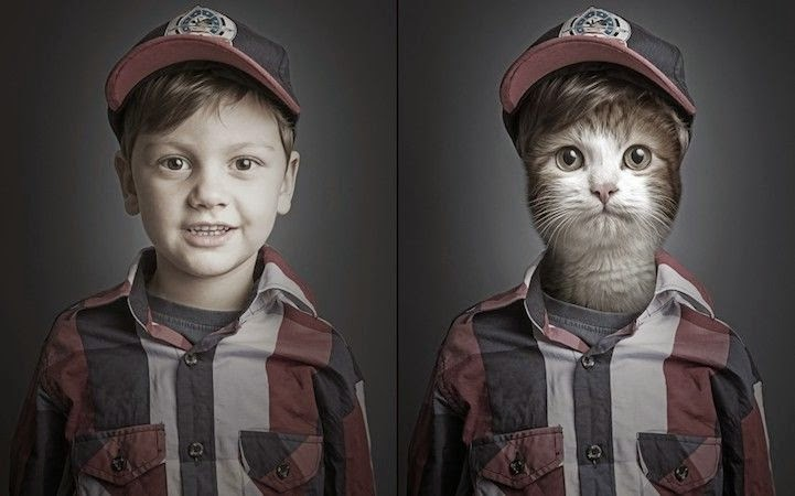 Funny Series of Photographs of Cats and Their Owners