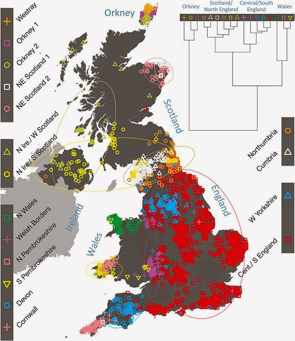 Dienekes Anthropology Blog A genetic map of the British population