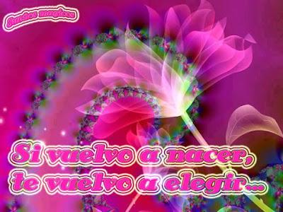 tarjetas de flor con frases de amor