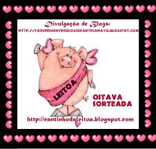 8ª SORTEADA NA DIVULGAÇÃO DE BLOGS PELAS BLOGUEIRAS UNIDAS