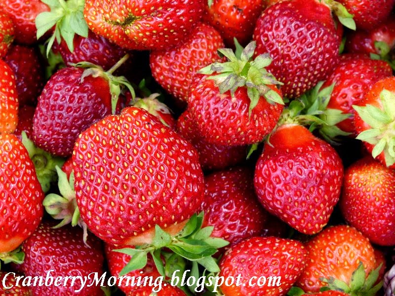 how to make a natural bug spray for my.strawberries