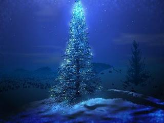 árbol_Navidad_nieve_noche