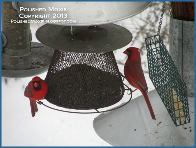 Picture of two male red birds on a sunflower seed feeder.