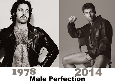 male perfection 1978 to present