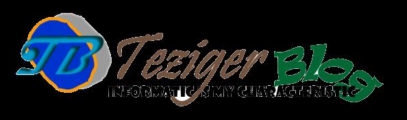 Teziger Blog