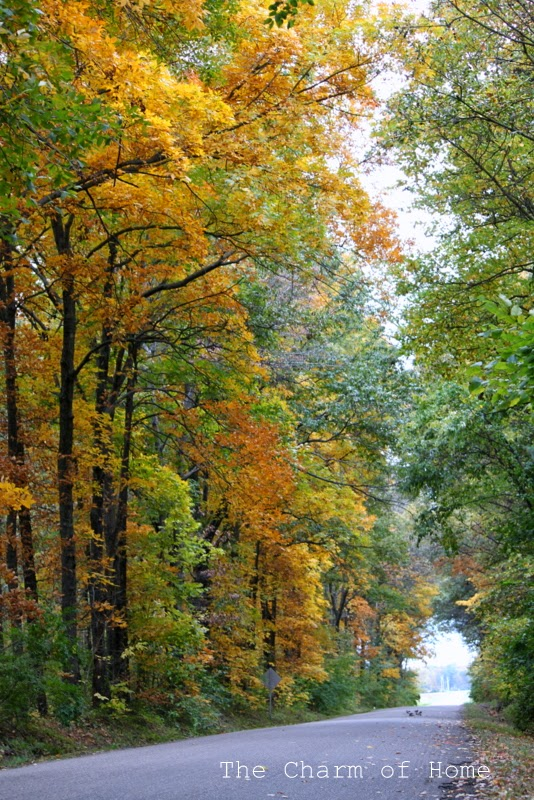 Autumn Photography: The Charm of Home