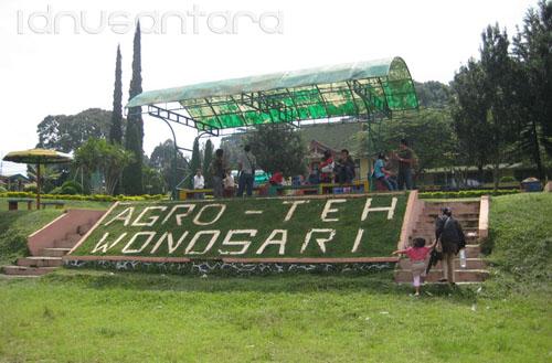 Kebun Teh Wonosari Malang