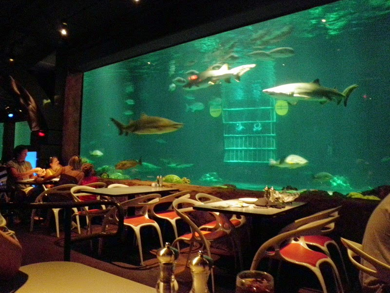 Restaurante Sharks Underwater Grill do SeaWorld em Orlando