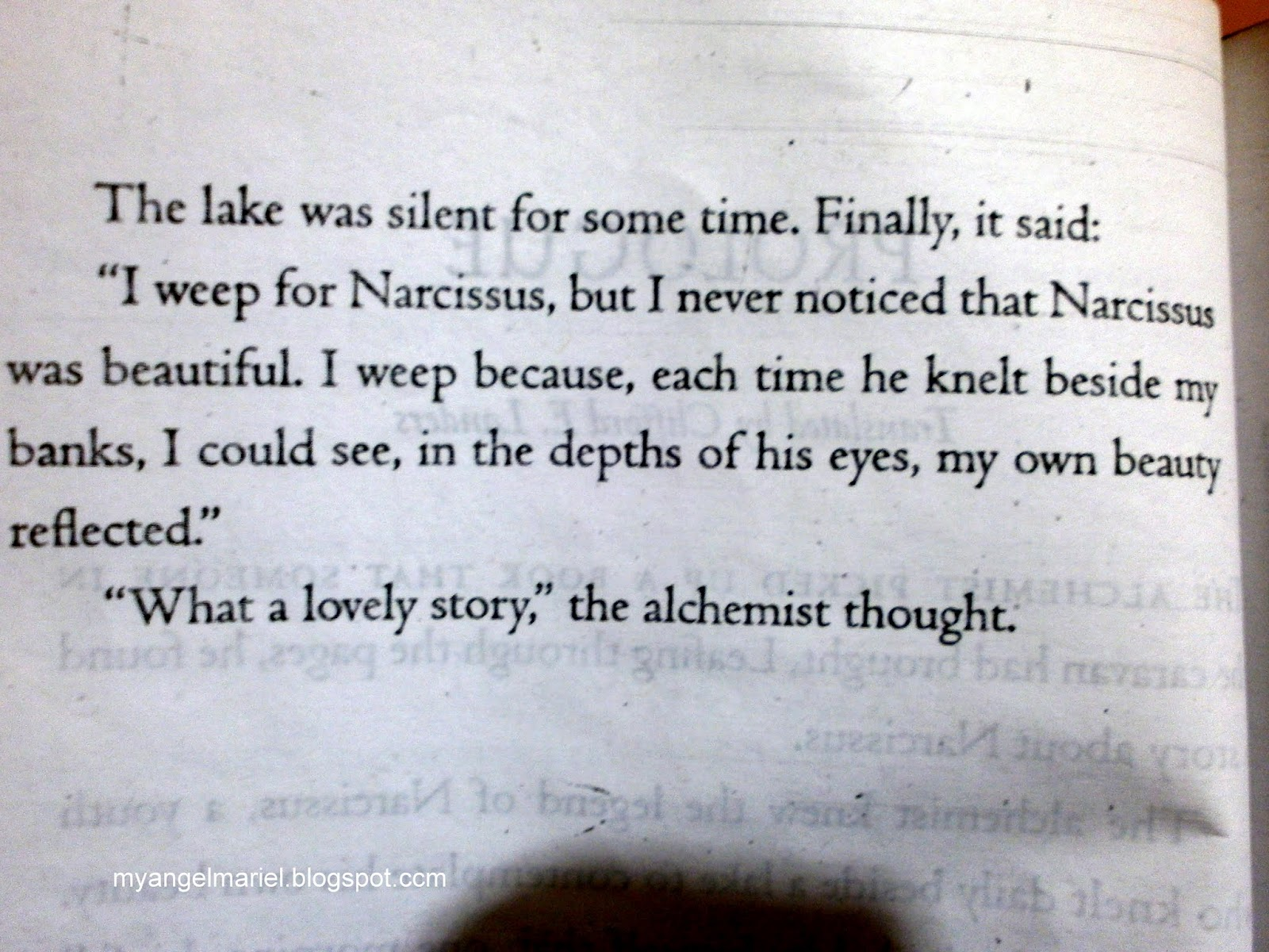the alchemist narcissus