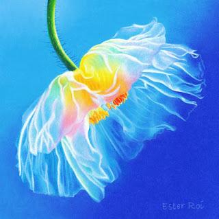 Cuadros Coloridos con Flores Lapices de Colores
