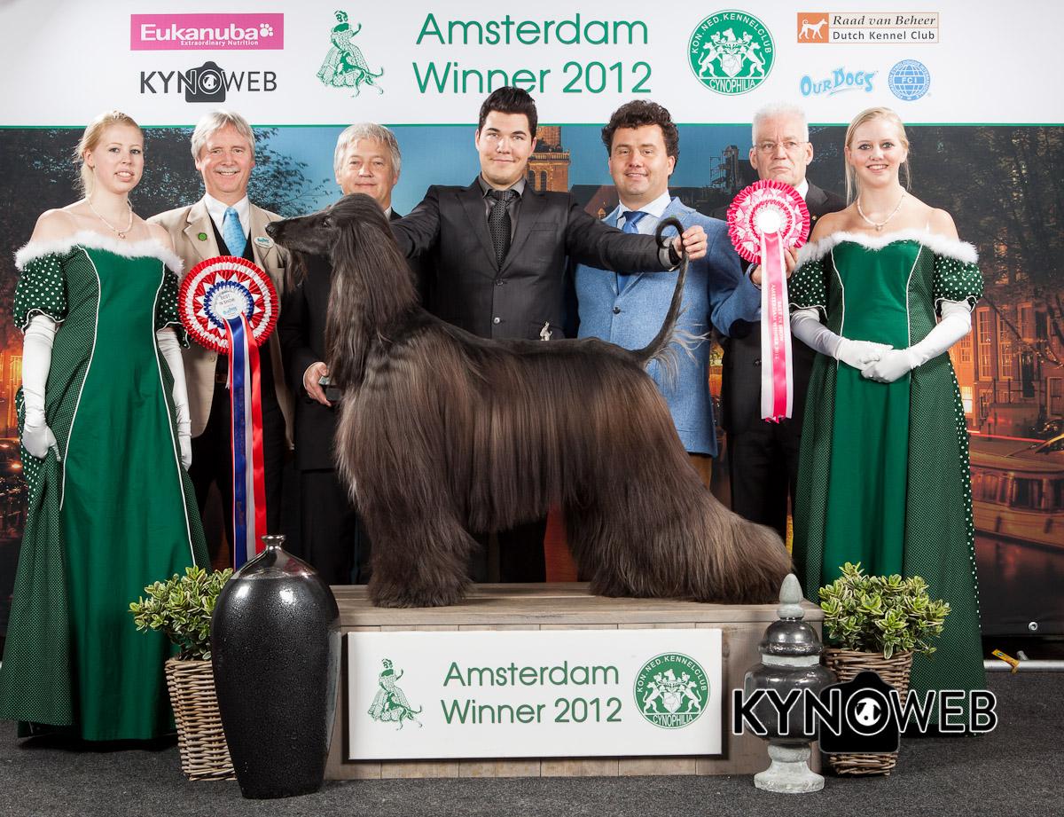 amsterdam huorat show striptease