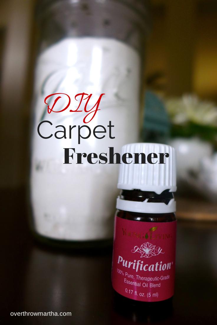 Simple DIY Carpet Freshener and Deodorizer with Essential ...