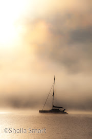 Yacht in mist in Paihia, Bay of Islands