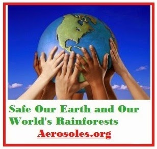 Safe Our Planet Earth