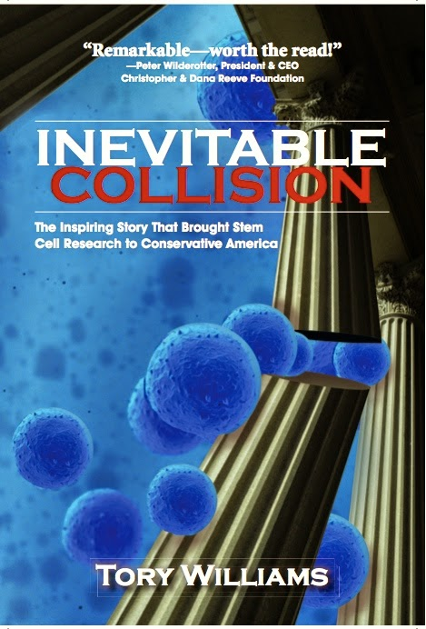 Inevitable Collision Cover