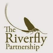 The Riverfly Partnership