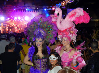Bird costumes at the Austin Carnaval in 2013