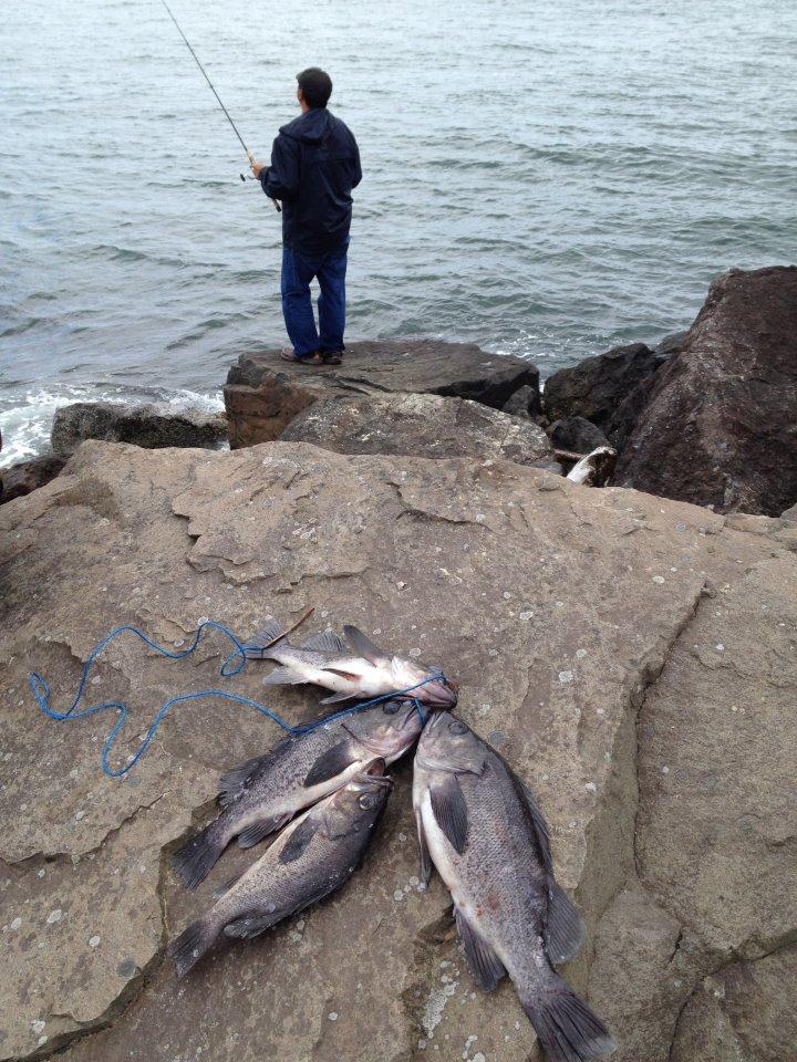 Things i like to do sea bass fishing for Bass fishing oregon