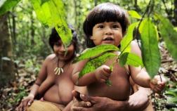 crianças-indigenas-awá-tribo-ameaçada