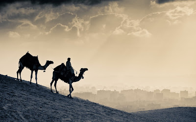desert-city-camels-egypt-clouds-wallpaper