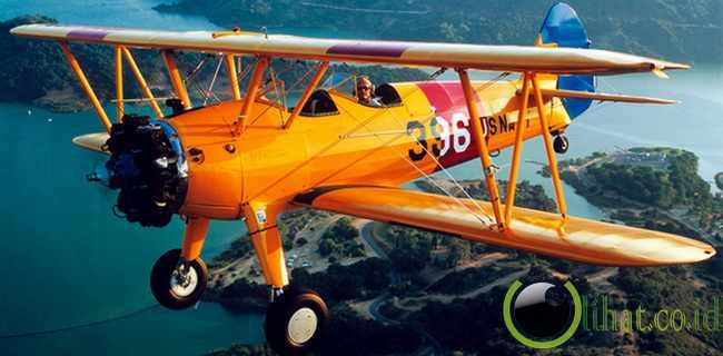 Biplane ( Memiliki 2 pasang sayap)