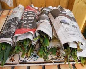 Liados en periódicos.