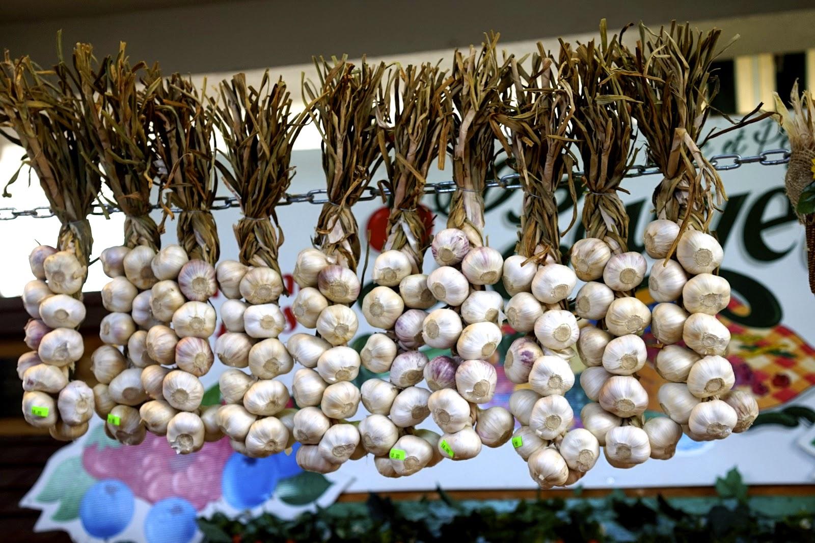garlic jean talon market
