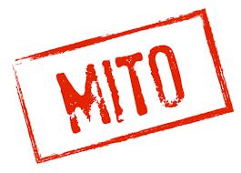 Futebol: mitos e mitos...