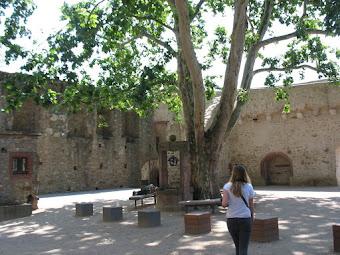 Inner courtyard od Burg Eltville