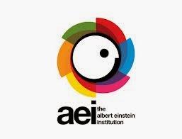 Albert Eisntein Institution (AEI) - Promoviendo El Golpe Suave