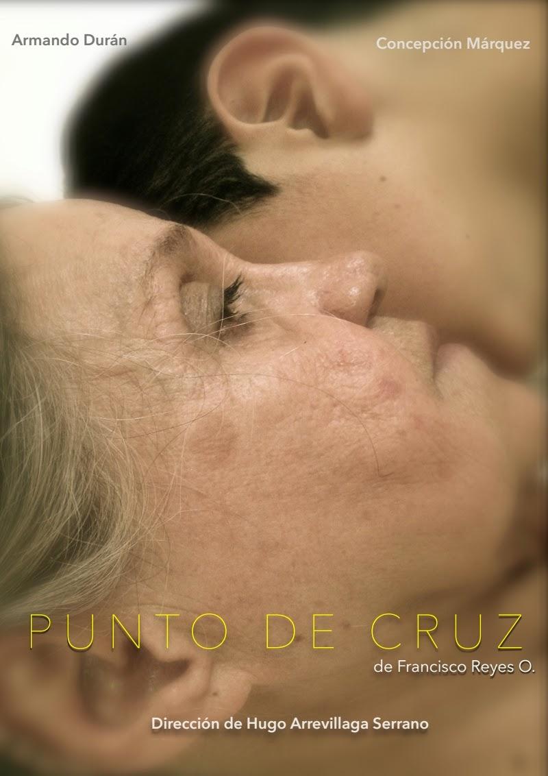 """Corta temporada de """"Punto de cruz"""" en el Teatro Benito Juárez"""
