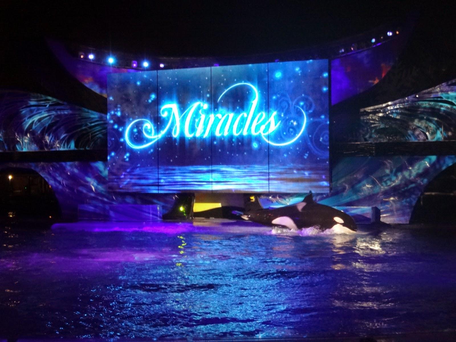 shamu - miracles - parque sea world - orlando, florida