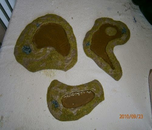 Making Ponds and Swamps picture 20