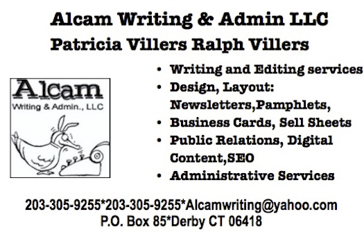 Alcam Writing and Admin LLC
