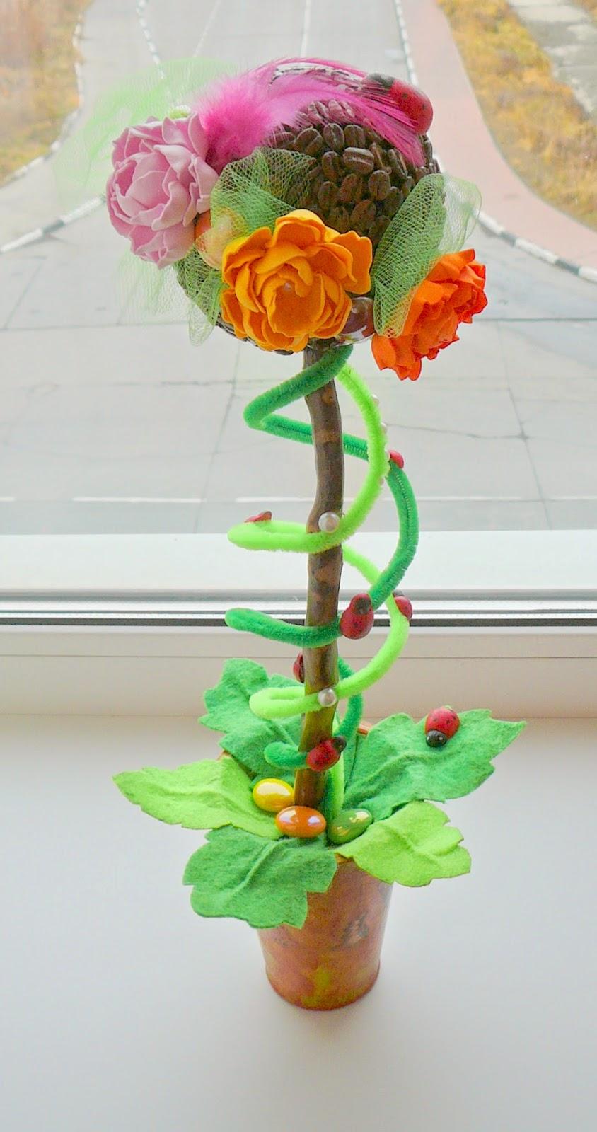 Комнатные цветы кодиеум уход