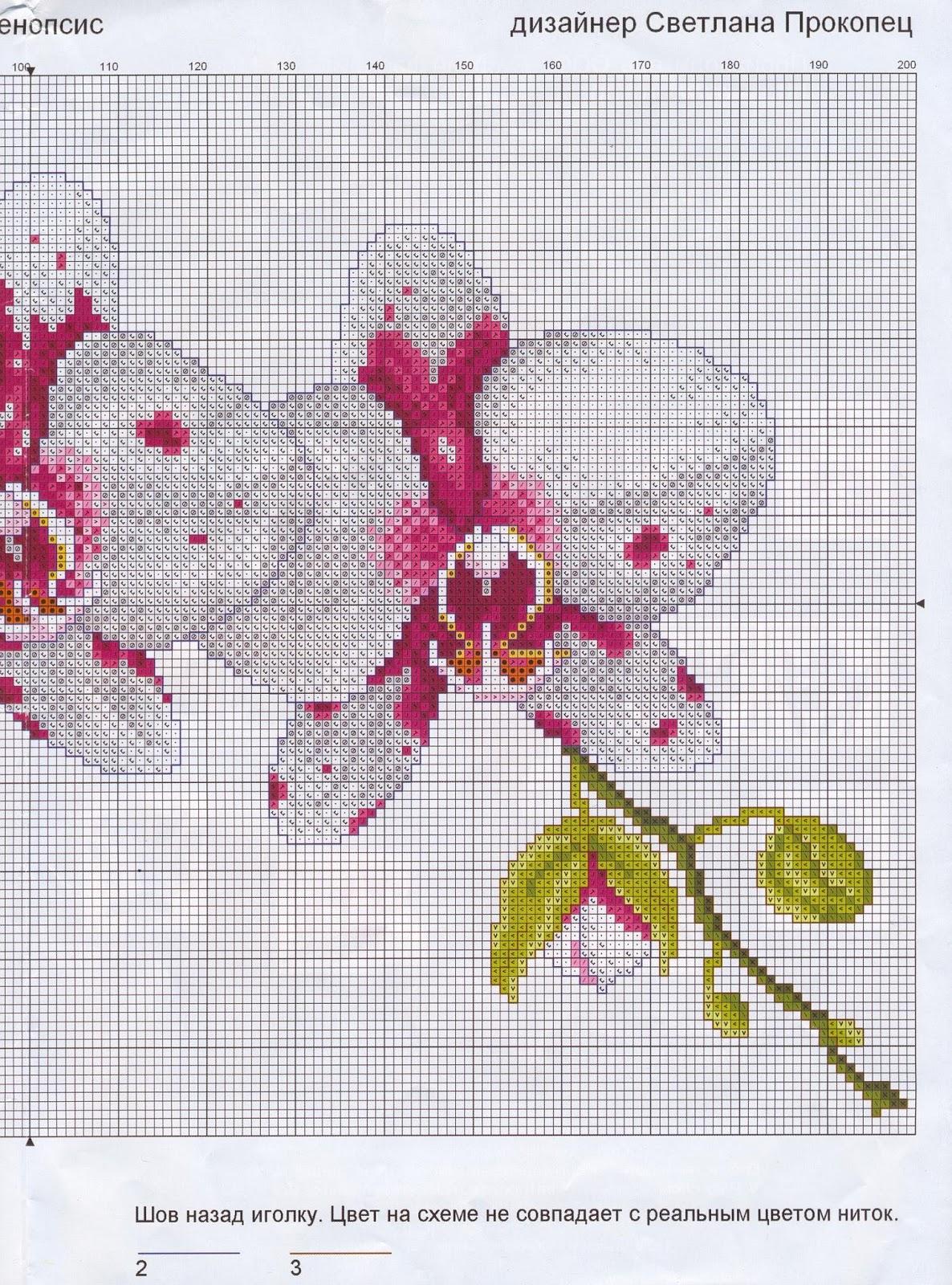 Скачать схему - Цветы, флора 76