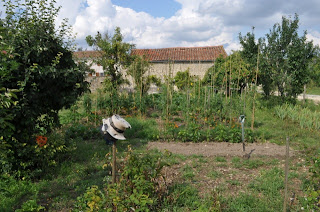 French Village Diaries Silent Sunday photos potager gardening