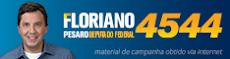 FLORIANO PESARO DEPUTADO FEDERAL 4544