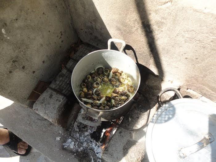 Cucinare lontano 424 lumache stufate alle verdure alla for Cucinare le lumache