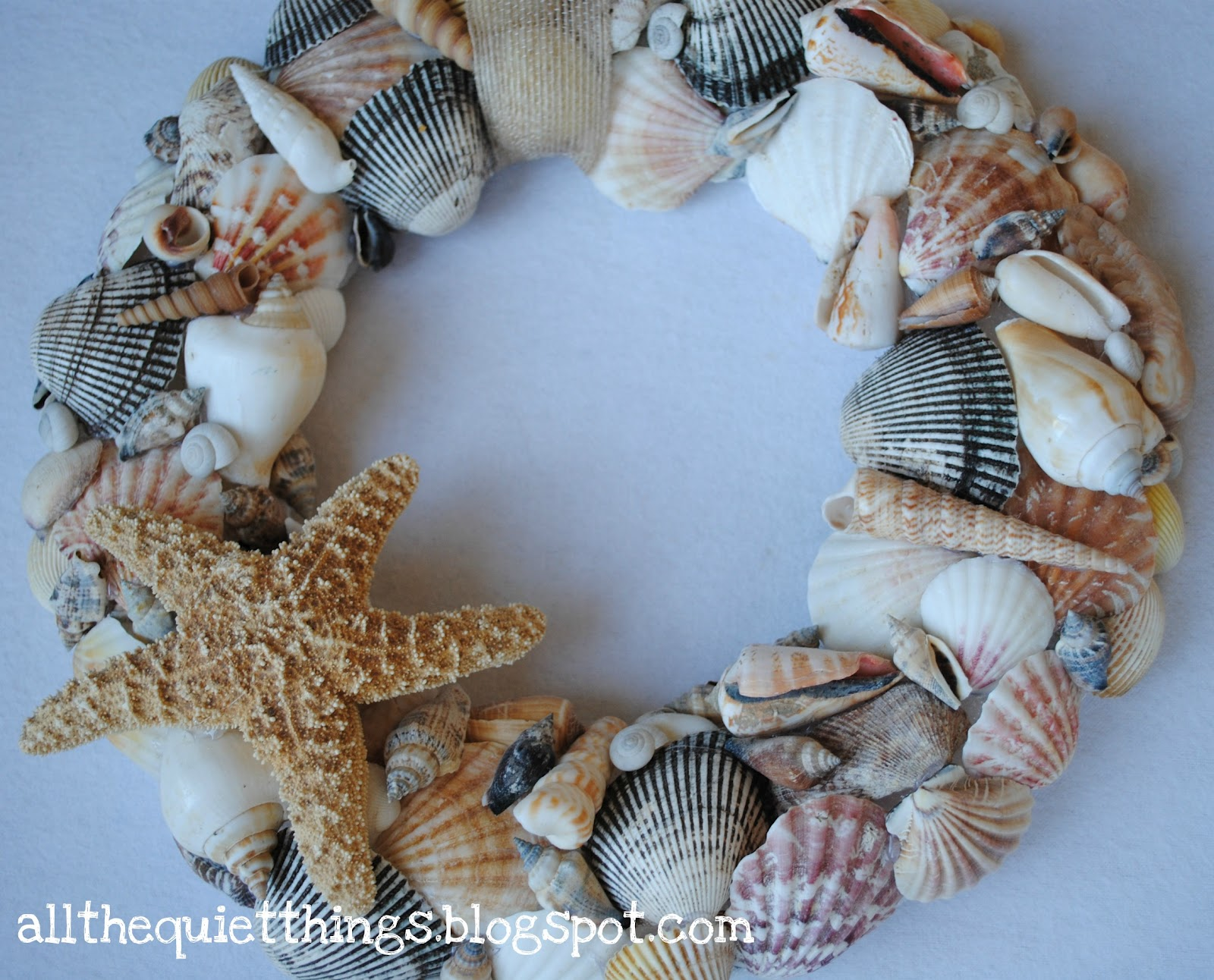 All the quiet things she sells sea shells - Things to do with seashells ...