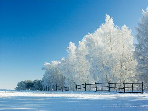 3d winter wallp... 3d Wallpaper For Winter