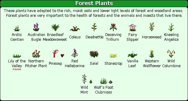 Plant Mega Pack Mod forest